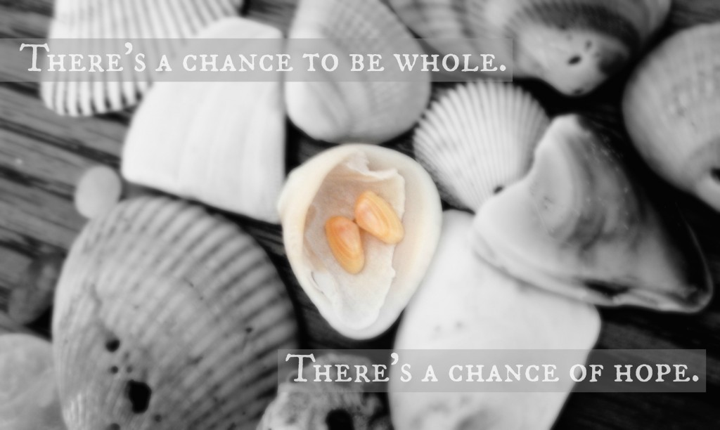 There's a chance to be whole. There's a chance of hope. I The Reluctant Sojourner